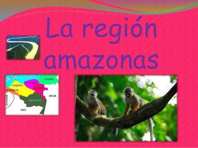 La región amazonas