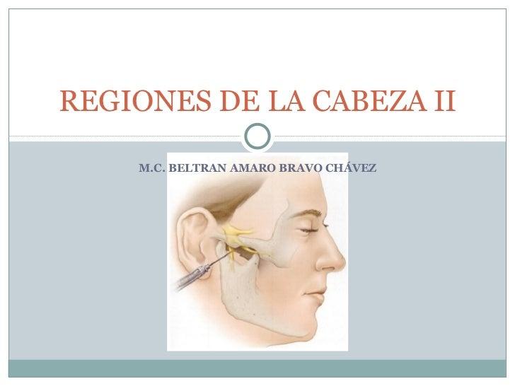 M.C. BELTRAN AMARO BRAVO CHÁVEZ REGIONES DE LA CABEZA II