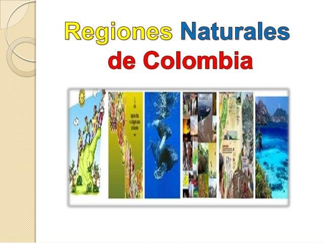Las regiones naturales son las divisiones del territorio de un país. Presentan uniformidades tanto en su aspecto físico (r...