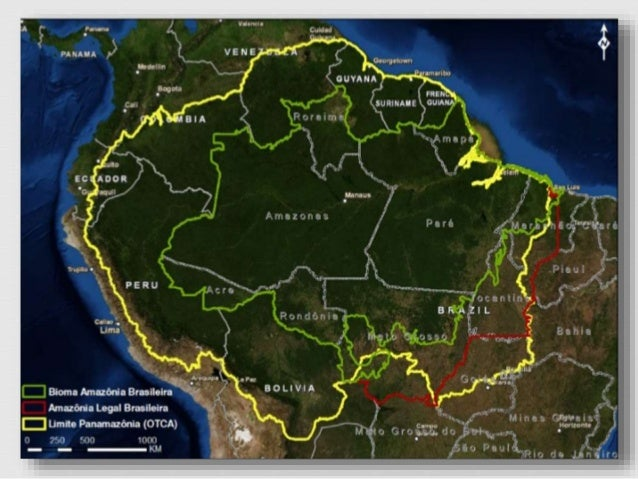 brasileira completo
