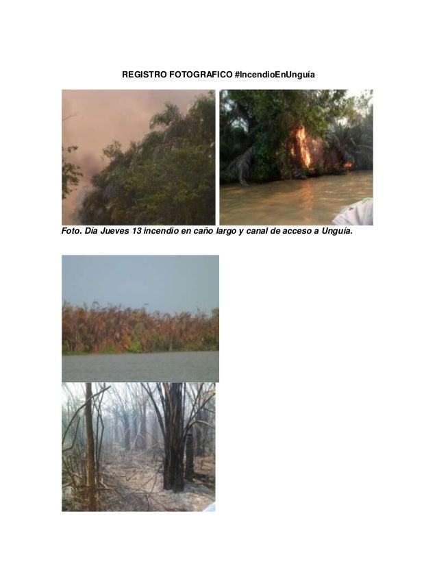 REGISTRO FOTOGRAFICO #IncendioEnUnguía Foto. Día Jueves 13 incendio en caño largo y canal de acceso a Unguía.