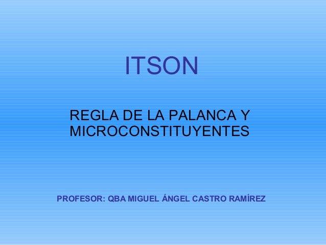 ITSON  REGLA DE LA PALANCA Y  MICROCONSTITUYENTESPROFESOR: QBA MIGUEL ÁNGEL CASTRO RAMÍREZ