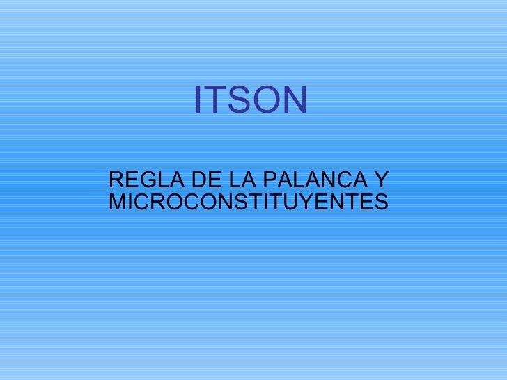 ITSON REGLA DE LA PALANCA Y MICROCONSTITUYENTES