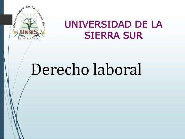 UNIVERSIDAD DE LA SIERRA SUR Derecho laboral