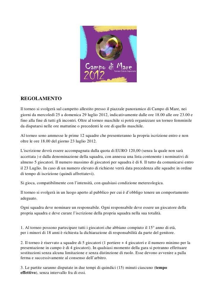 Regolamento ufficiale Calcio Saponato