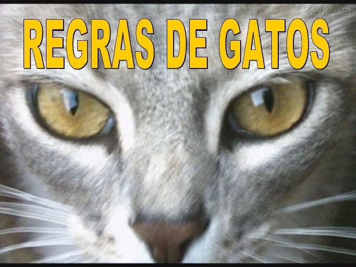 REGRAS DE GATOS