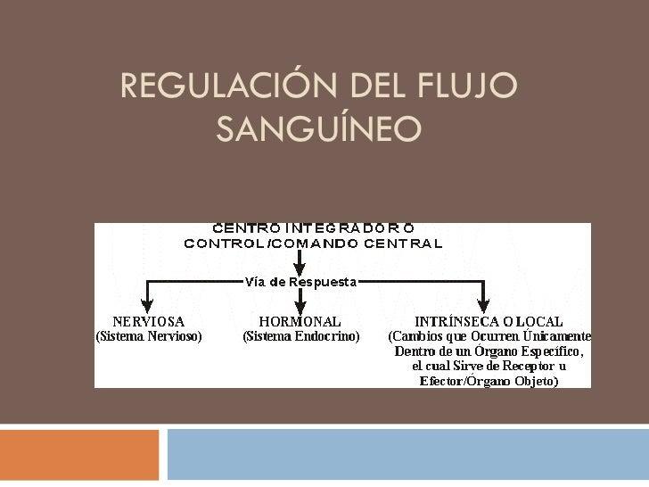 REGULACIÓN DEL FLUJO SANGUÍNEO