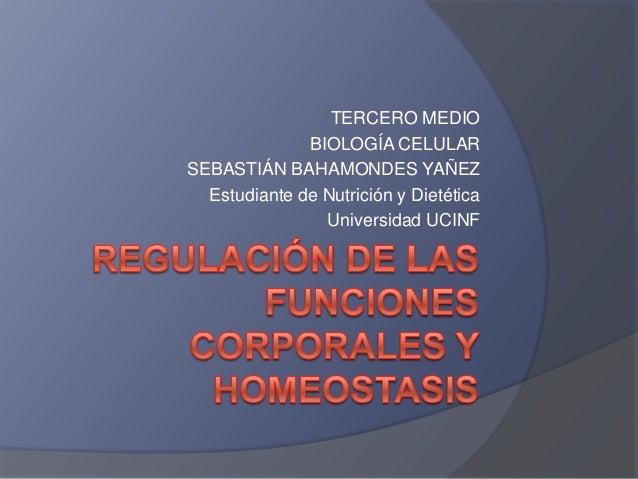 TERCERO MEDIO BIOLOGÍA CELULAR SEBASTIÁN BAHAMONDES YAÑEZ Estudiante de Nutrición y Dietética Universidad UCINF