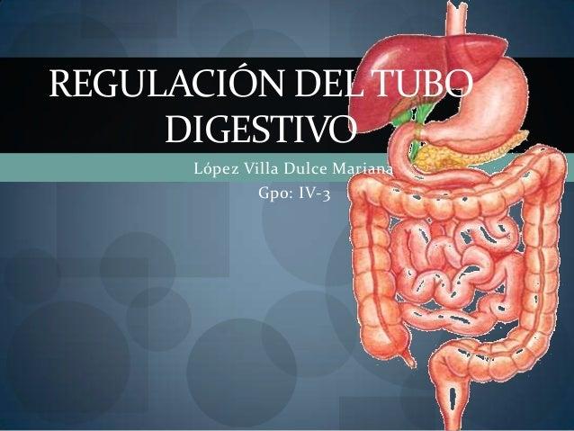 López Villa Dulce MarianaGpo: IV-3REGULACIÓN DEL TUBODIGESTIVO