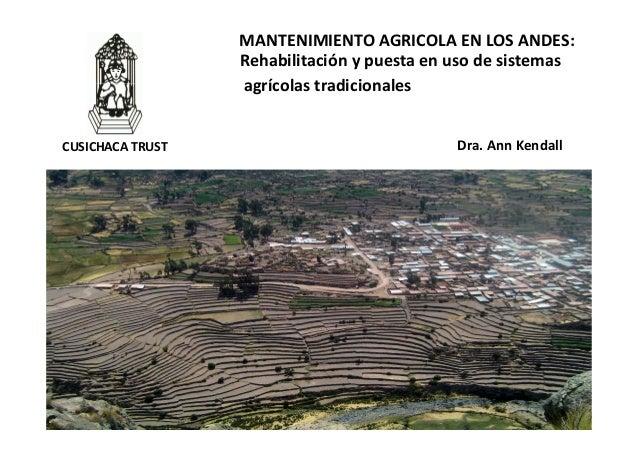 1 Dra. Ann Kendall MANTENIMIENTO AGRICOLA EN LOS ANDES: Rehabilitación y puesta en uso de sistemas agrícolas tradicionales...