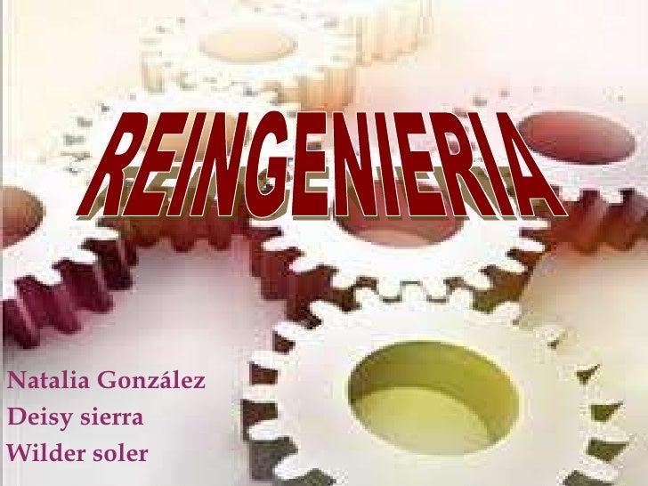 REINGENIERIA<br />Natalia González<br />Deisy sierra <br />Wilder soler<br />