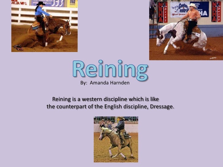 By: Amanda Harnden  Reining is a western discipline which is likethe counterpart of the English discipline, Dressage.
