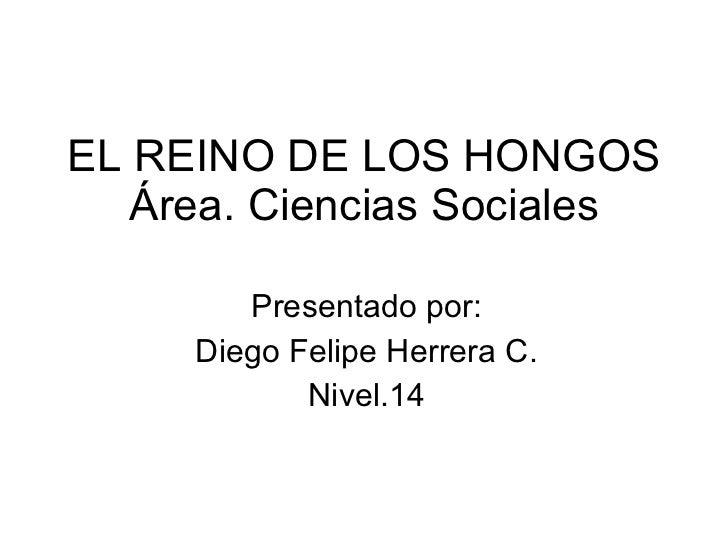 EL REINO DE LOS HONGOS Área. Ciencias Sociales Presentado por: Diego Felipe Herrera C. Nivel.14