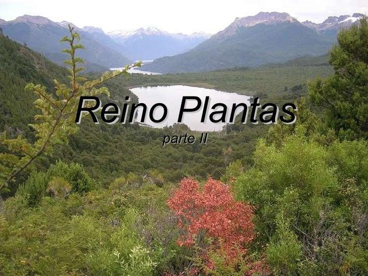 Reino   Plantas parte II