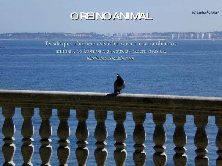 Álbum de fotografías por larisa Desde que o homem existe há música. mas também os animais, os átomos e as estrelas fazem m...