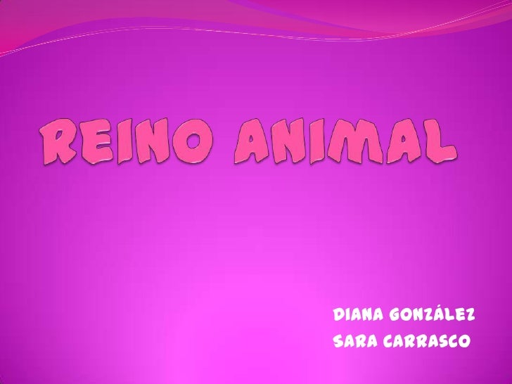 Reino Animal<br />Diana González <br />Sara Carrasco<br />