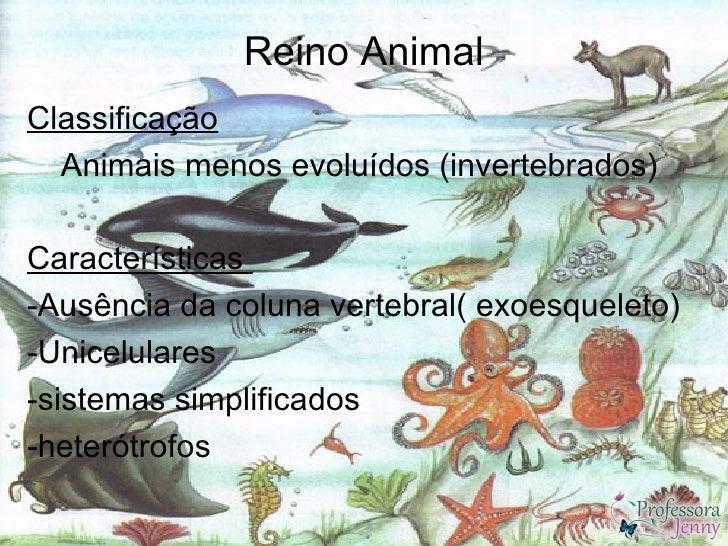 Reino AnimalClassificação  Animais menos evoluídos (invertebrados)Características-Ausência da coluna vertebral( exoesquele...