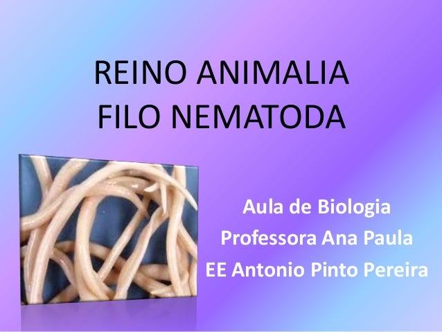 REINO ANIMALIA FILO NEMATODA Aula de Biologia Professora Ana Paula EE Antonio Pinto Pereira