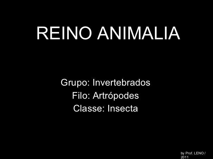REINO ANIMALIA Grupo: Invertebrados Filo: Artrópodes Classe: Insecta by Prof. LENO / 2011