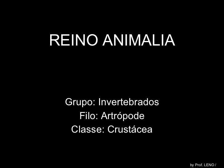 REINO ANIMALIA Grupo: Invertebrados Filo: Artrópode Classe: Crustácea by Prof. LENO / 2011