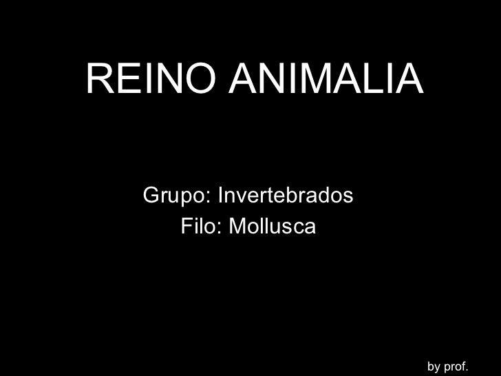 REINO ANIMALIA Grupo: Invertebrados Filo: Mollusca by prof. LENO