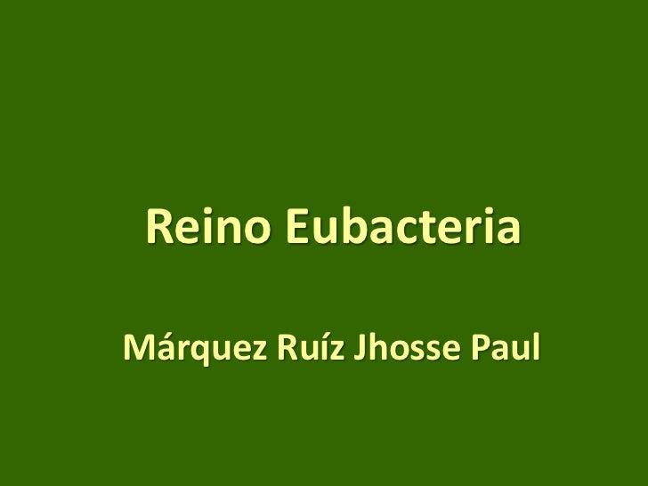Reino Eubacteria