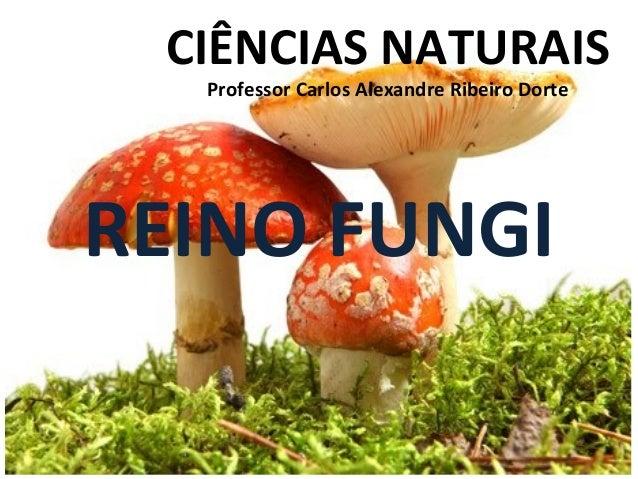 CIÊNCIAS NATURAIS Professor Carlos Alexandre Ribeiro Dorte  REINO FUNGI