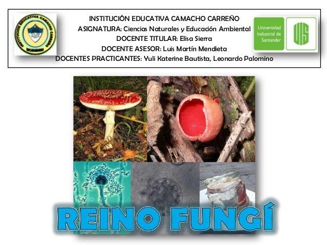INSTITUCIÓN EDUCATIVA CAMACHO CARREÑO     ASIGNATURA: Ciencias Naturales y Educación Ambiental                DOCENTE TITU...