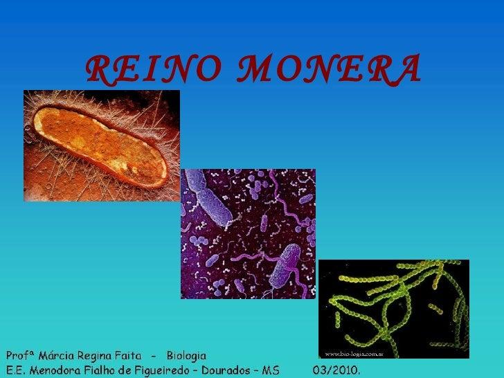 REINO MONERA