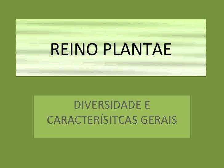 REINO PLANTAE    DIVERSIDADE ECARACTERÍSITCAS GERAIS