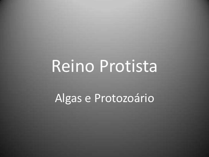Reino Protista<br />Algas e Protozoário<br />