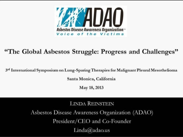 """""""The Global Asbestos Struggle: Progress and Challenges"""" by Linda Reinstein"""