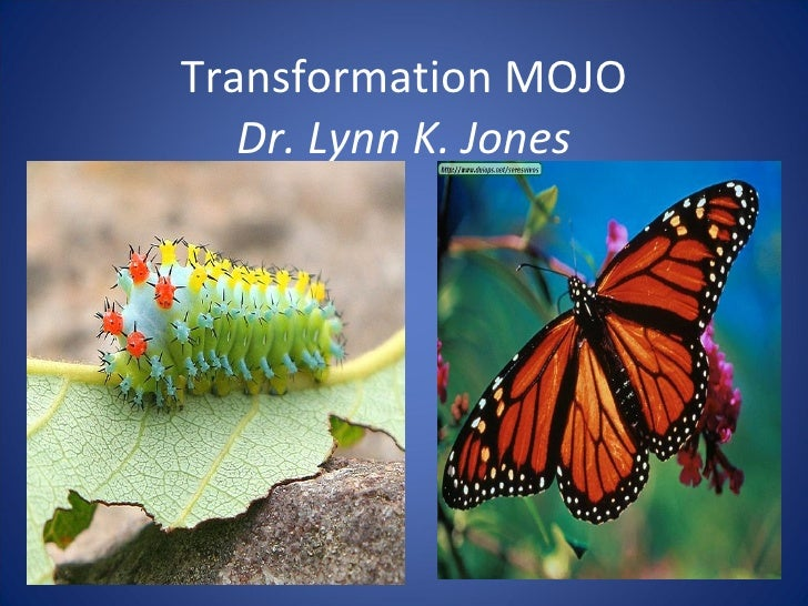 Transformation MOJO Dr. Lynn K. Jones