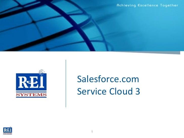 REI Systems, Inc.                    Salesforce.com                    Service Cloud 3                       1