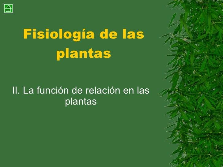 Fisiología de las plantas II. La función de relación en las plantas