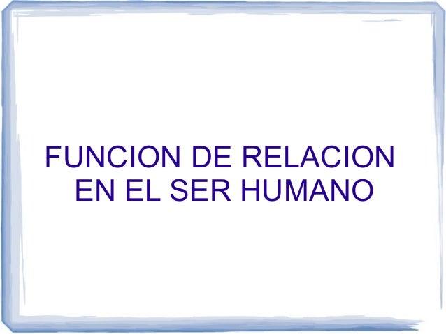 FUNCION DE RELACION EN EL SER HUMANO