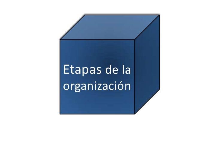 Etapas de la organización<br />