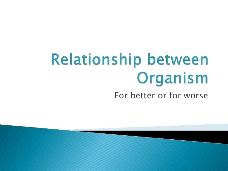 Relationship between Organism <br />For better or for worse<br />