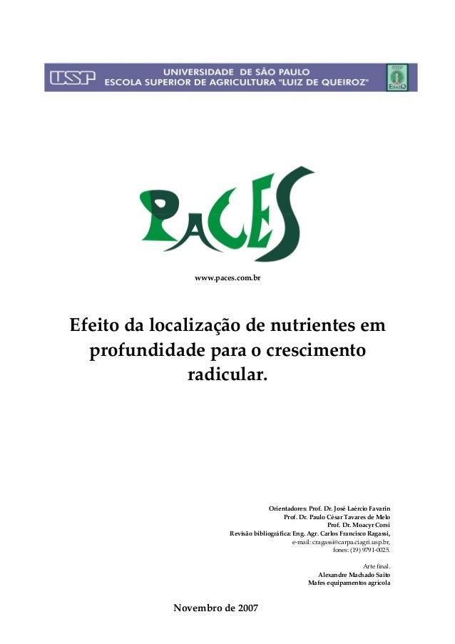 www.paces.com.brEfeito da localização de nutrientes em  profundidade para o crescimento               radicular.          ...