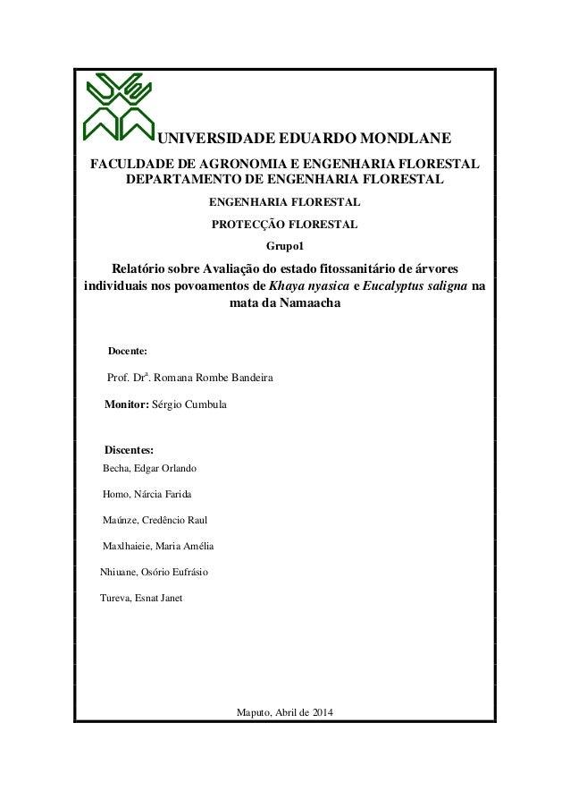 UNIVERSIDADE EDUARDO MONDLANE FACULDADE DE AGRONOMIA E ENGENHARIA FLORESTAL DEPARTAMENTO DE ENGENHARIA FLORESTAL ENGENHARI...