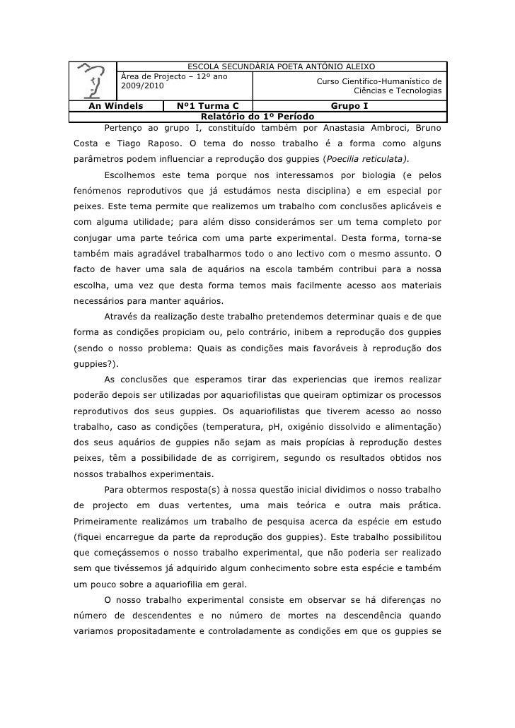 ESCOLA SECUNDÁRIA POETA ANTÓNIO ALEIXO              Área de Projecto – 12º ano                                            ...