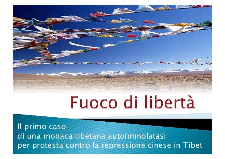 Fuoco di libertà - Lavoro di analisi della notizia TTNM 11/12