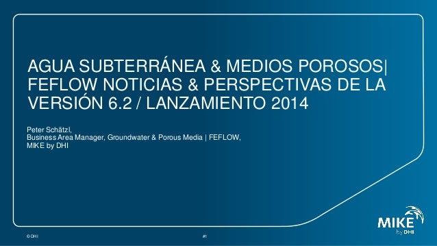 AGUA SUBTERRÁNEA & MEDIOS POROSOS| FEFLOW NOTICIAS & PERSPECTIVAS DE LA VERSIÓN 6.2 / LANZAMIENTO 2014 Peter Schätzl, Busi...