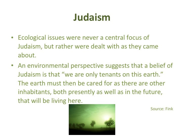 What do you think about the Recent ecological Issues and our Responsibility to the environment ?