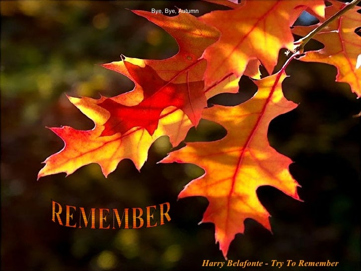 Bye, Bye, Autumn REMEMBER Harry Belafonte - Try To Remember