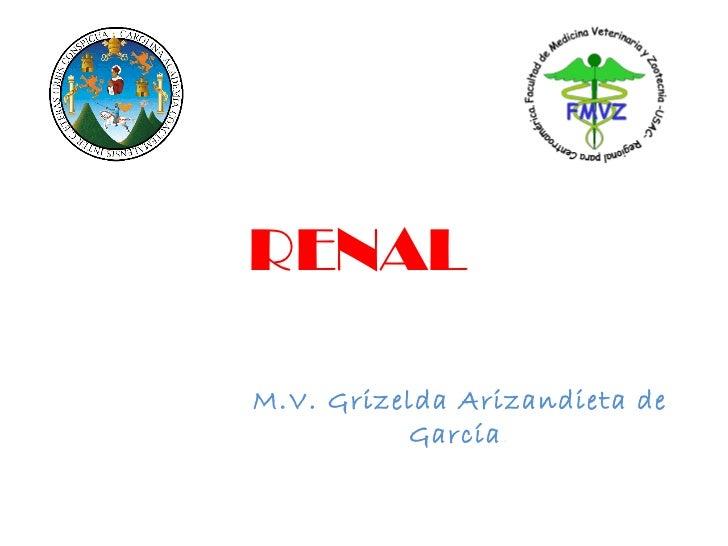 RENAL M.V. Grizelda Arizandieta de García .