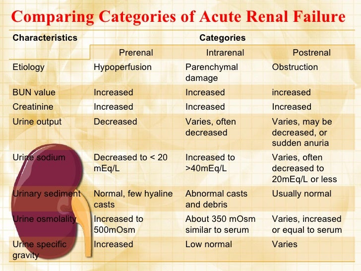 Renal Failure Cb Categories Acute Function