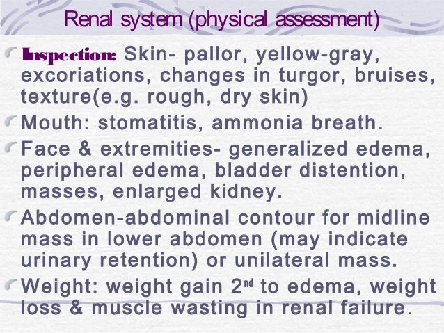 Renal system (physical assessment) Inspection: Skin- pallor, yellow-gray, excoriations, changes in turgor, bruises, textur...