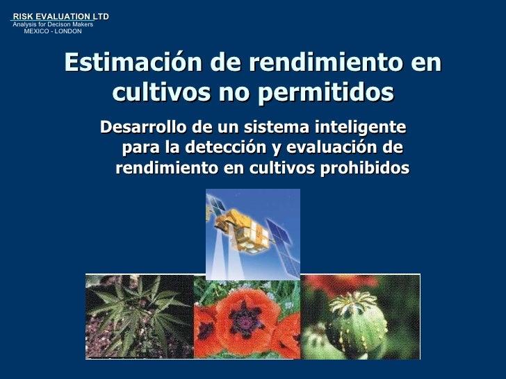 Estimación de rendimiento en cultivos no permitidos