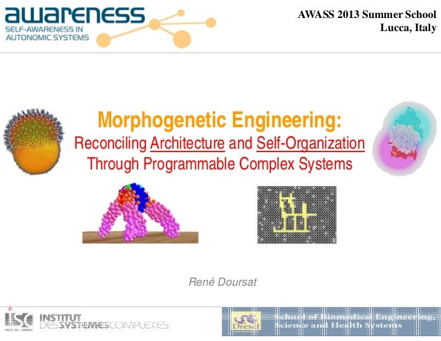 Morphogenetic Engineering: Reconciling Architecture and Self-Organization Through Programmable Complex Systems BMES Semina...